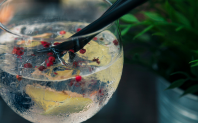 Tu Gin-Tonic perfecto.