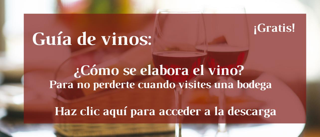 Guia de elaboracion del vino